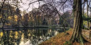 """Reggia di Monza. Adotta un """"pezzo"""" di Villa e Parco"""