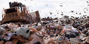Lo spreco alimentare costa 15 miliardi di euro all'anno