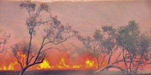 """Australia in fiamme. La """"Chernobyl della crisi climatica"""""""