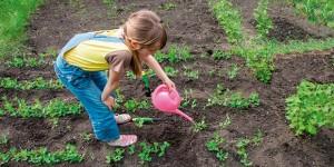 Educazione alimentare con l'orto didattico di Slow Food
