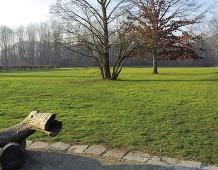 Una città verde, una città sana. Milano, Bosco in Città