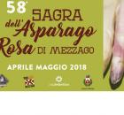 Sagra dell'asparago rosa