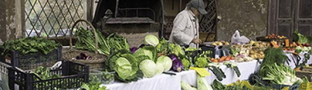 Mercati della Terra di Slow Food. Tradizioni, cibo e territorio