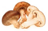 Funghi prataioli