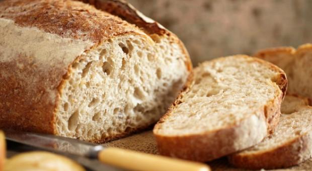 Il pane (e non solo) fatto in casa con la pasta madre!