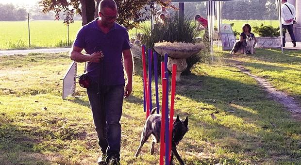 Risolvere i problemi con i cani è possibile