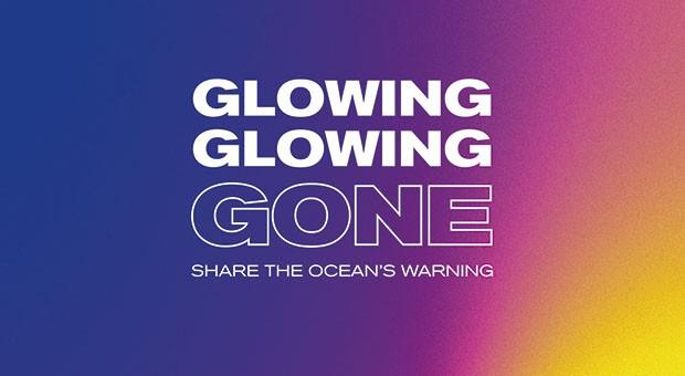 Glowing Gone. I colori perduti dei coralli