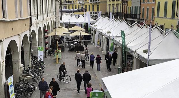 Brescia Green 2017
